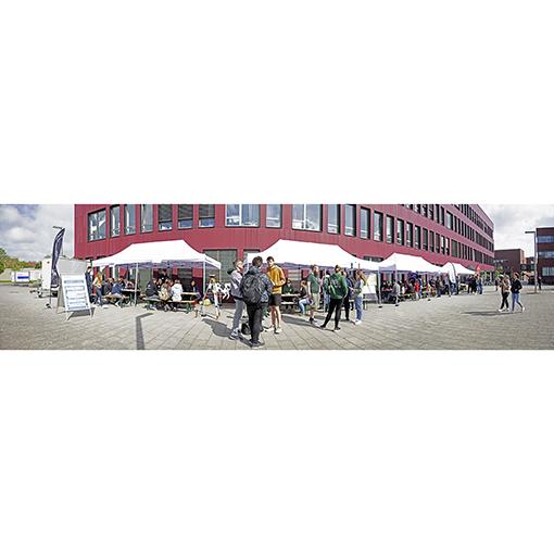 Jana Basinski